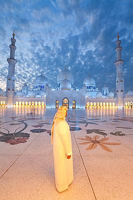 United Arab Emirates (UAE), Abu Dhabi, Sheikh Zayed Bin Sultan Al Nahyan Mosque (MR) - p6511278 by Gavin Hellier