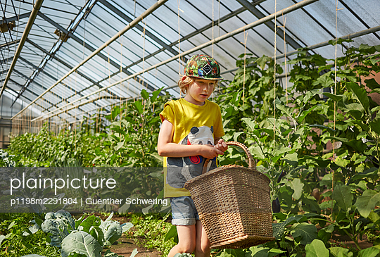 Boy on a farm - p1198m2291804 by Guenther Schwering