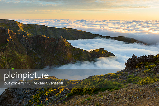 p312m1471775 von Mikael Svensson