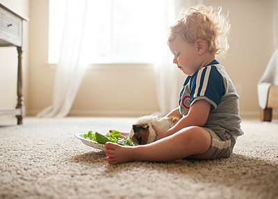 Side view of cute baby boy feeding leaves to guinea pig on carpet at home - p1166m2067873 by Cavan Images