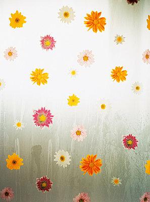 Shower curtain - p3125215 by Ewa Ahlin