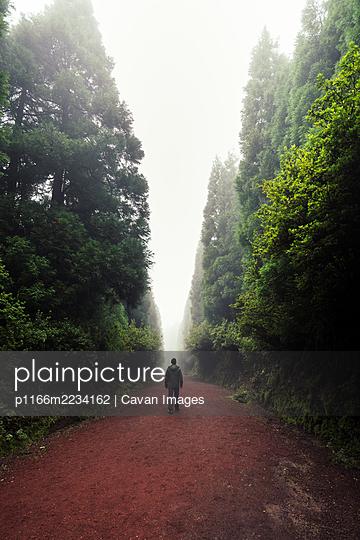 Silhouette of a man walking through a foggy path - p1166m2234162 by Cavan Images