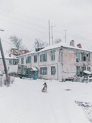 p1425m1492555 by JAKOB SCHNETZ