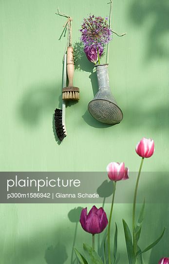 Decoration with flowers hanging on bright green wall - p300m1586942 von Gianna Schade