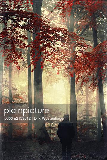 Rear view of man in autumn forest - p300m2139812 by Dirk Wüstenhagen
