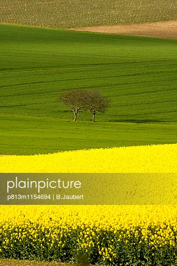 p813m1154694 by B.Jaubert