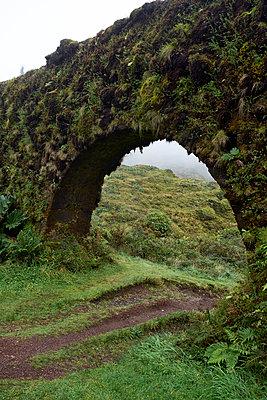 alte Brücke mit Moos - p1146m2057671 von Stephanie Uhlenbrock