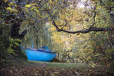 Schiff im Garten - p1357m1487211 von Amadeus Waldner