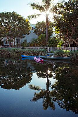 Venice - California - p432m1082666 by mia takahara