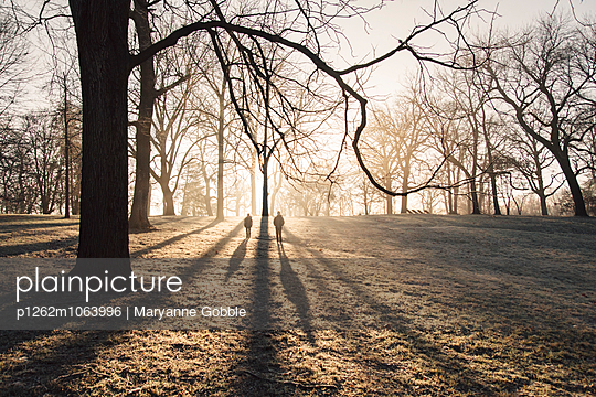 Shadows of Children in Trees - p1262m1063996 by Maryanne Gobble