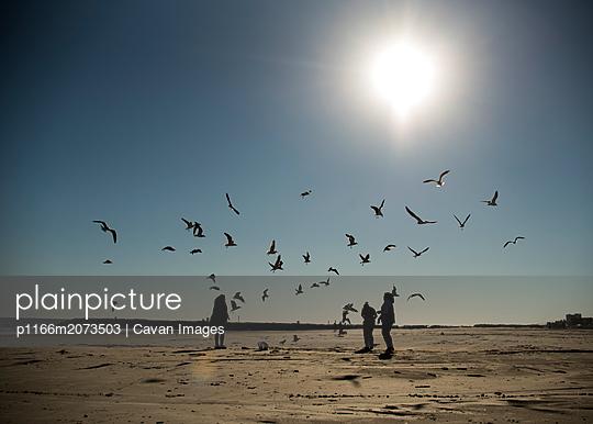 p1166m2073503 von Cavan Images