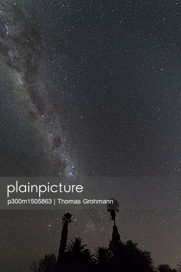 Namibia, Region Khomas, near Uhlenhorst, Astrophoto, Band of southern Milky Way with palm trees in foreground - p300m1505863 by Thomas Grohmann
