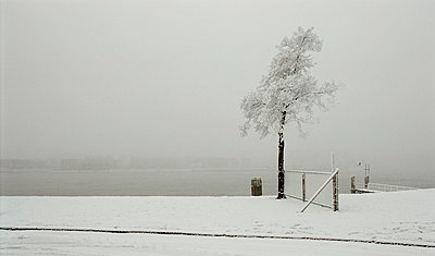 Snow at the Nieuwe Maas - p1132m1016953 by Mischa Keijser
