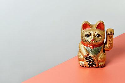 Golden cat - p1423m1558787 by JUAN MOYANO