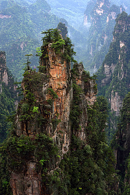 Zhangjiajie National Forest Park, China - p523m1148687 von Lisa Kimmell
