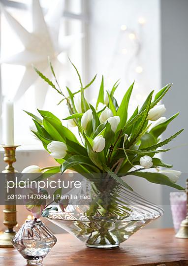 White tulips in vase