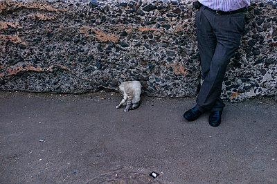Katze und Männerbeine - p1085m854186 von David Carreno Hansen