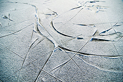 Tracks in the ice - p4264211f by Helena Wahlman