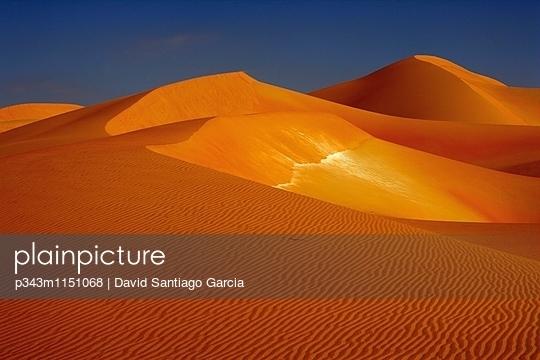 p343m1151068 von David Santiago Garcia