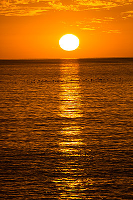 Sunset over the sea - p958m2142636 by KL23