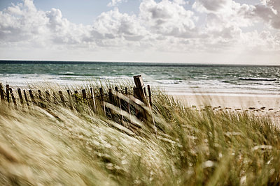 France, Normandy, Portbail, Contentin, wooden fence at beach dune - p300m1549542 by Jan Tepass