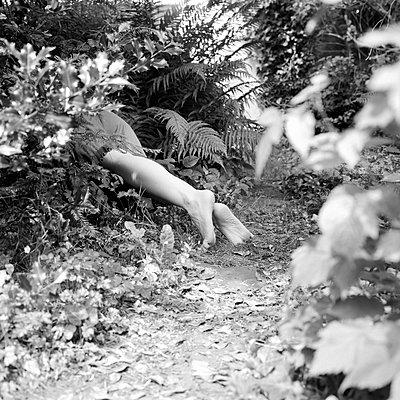 Beine im Gebüsch - p1550m2134571 von Kumi Oguro