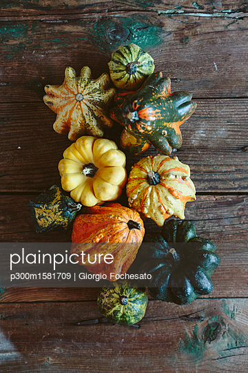 Various Ornamental pumpkins on wood - p300m1581709 von Giorgio Fochesato