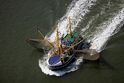 Krabbenfischer - p1016m1137527 von Jochen Knobloch