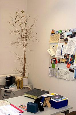 Tote Büropflanze mit Pinnwand - p1164m951941 von Uwe Schinkel