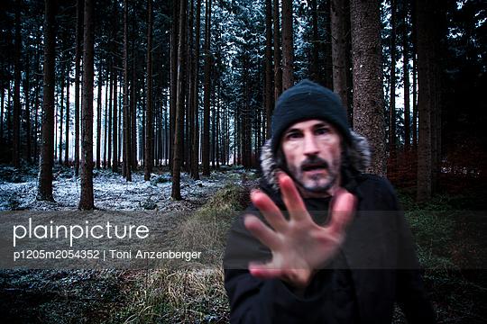 Wald - p1205m2054352 von Toni Anzenberger