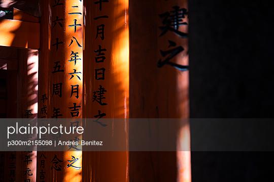 Japan, Kyoto Prefecture, Kyoto City,Kanjiontoriigates leading toFushimiInari-taishatemple - p300m2155098 by Andrés Benitez