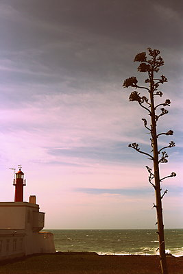 Leuchtturm in Cascais - p1063m1492501 von Ekaterina Vasilyeva