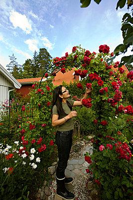 A Japanese woman in her Swedish garden Sweden. - p31221266f by Juliana Wiklund
