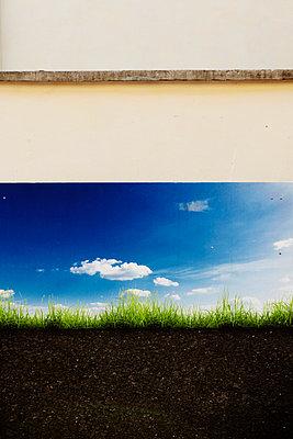 Natur in der Stadt - p415m1057740 von Tanja Luther