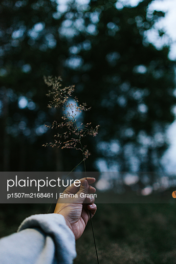Holding nature - p1507m2168461 by Emma Grann