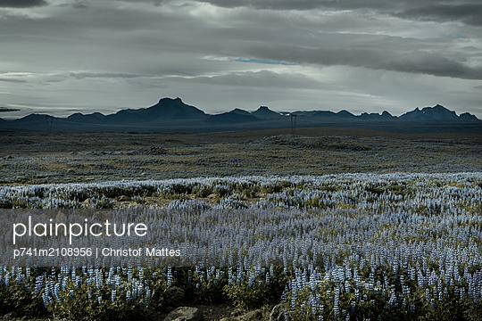 Landschaft in Island - p741m2108956 von Christof Mattes