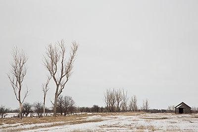 Old Barn - p1291m1116143 by Marcus Bastel