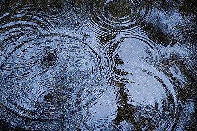 Raindrops - p44210890f by Darren Greenwood