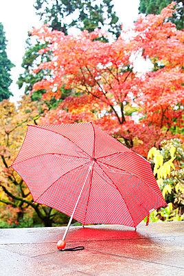 Regenschirm - p606m741169 von Iris Friedrich