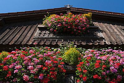 Bavarian Balcony I - p867m769915 by Thomas Degen