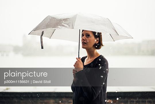 p300m1156631 von David Stoll