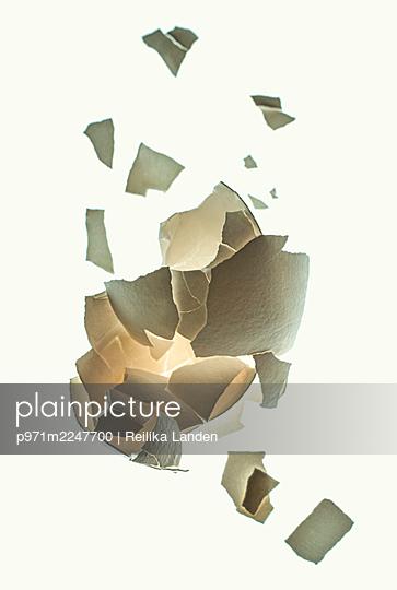 Broken eggshell - p971m2247700 by Reilika Landen