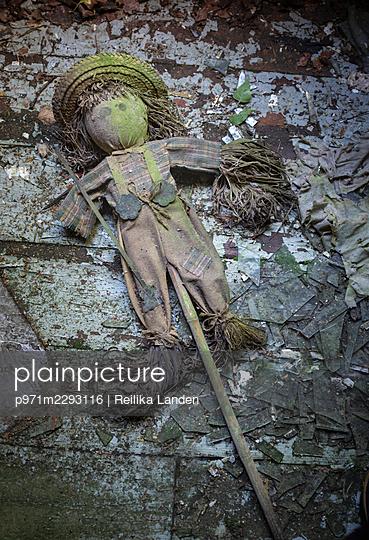 Scarecrow - p971m2293116 by Reilika Landen