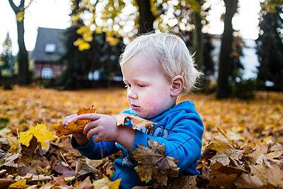 Junge spielt mit Blättern - p1046m1138211 von Moritz Küstner
