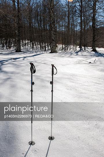 Alburni mountain. Petina. Ottati. Campania. Italy - p1403m2286973 by REDA&CO