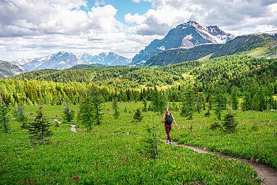 Hiker Walking Through Healey Pass in Banff National Park - p1166m2212584 by Cavan Images