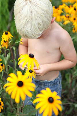 Little boy within flowers - p045m944621 by Jasmin Sander