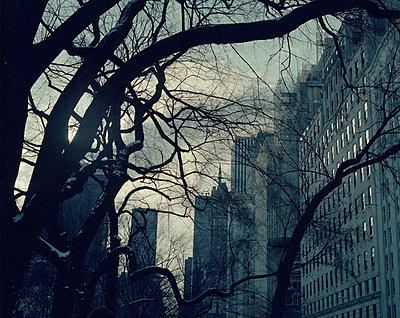 New York - p1051m924788 by Jakub Karwowski