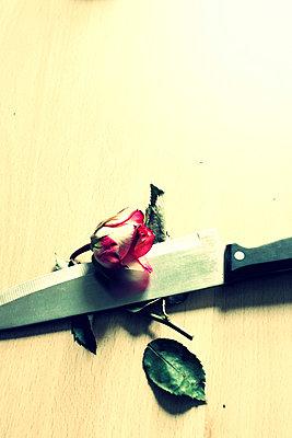 Knife and rose - p1063m856010 by Ekaterina Vasilyeva