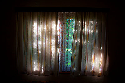 Window - p1129m1042689 by ROBINSIMON